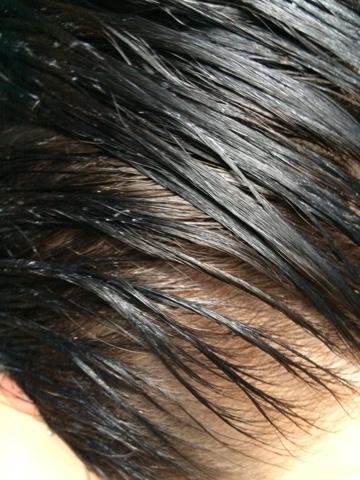 H'SUAN WEN HUA hair treatment from Lush in black hair