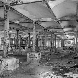 Pillars by Ella Kingston - Black & White Buildings & Architecture ( decaying building, abandoned building, workshop, brewery, black and white,  )
