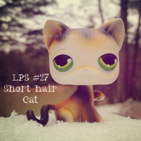 Littlest pet shop number 27