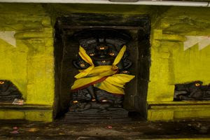 Thiruchemponpalli (Semponarkoil) Temple – Guru Dakshinamurthy