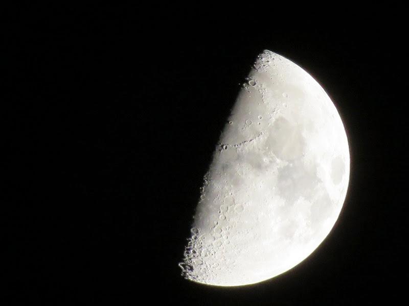 Video de corrida creciente de la luna