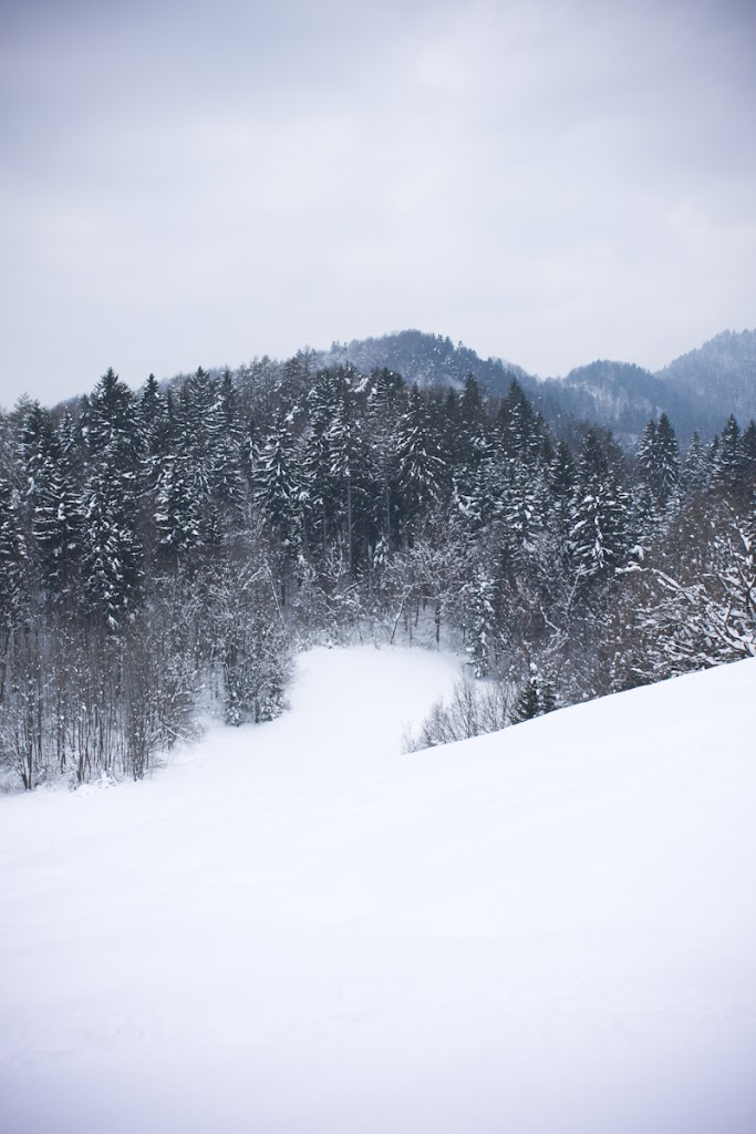 Winter Lubnik - Vika-0613.jpg