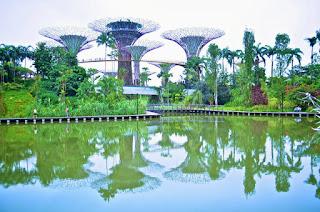 """Singapore """"Super Trees"""""""
