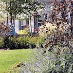 images-Landscape Design and Installation-landscape_b2.jpg
