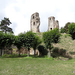 Château : ruines et Tour d'Anne de Bretagne