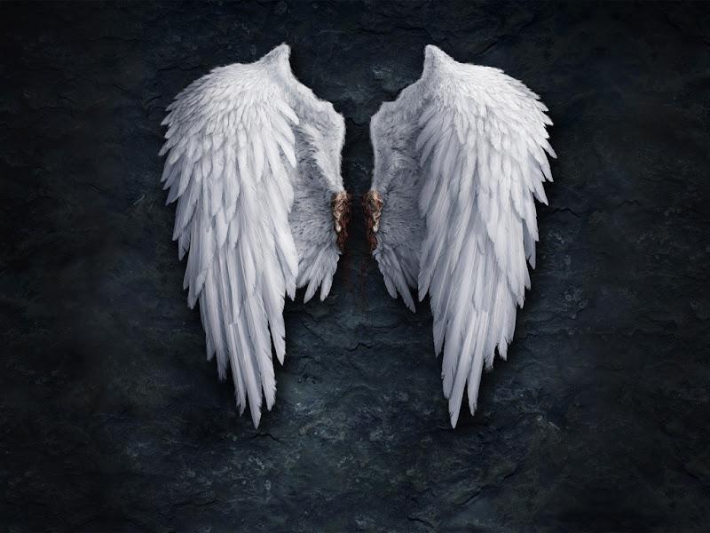 Bloody Angels Wings, Angels 2
