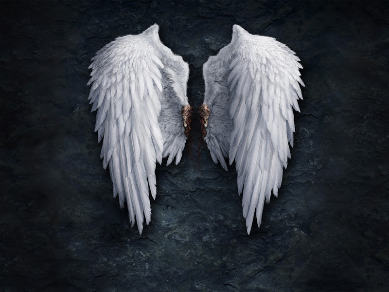 Bloody Angels Wings, Angels 2