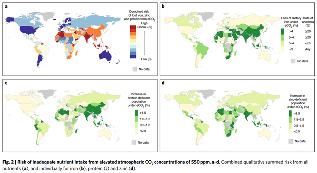 Maps showing risk of inadequate nutrient intake from elevated atmospheric CO2 concentrations of 550ppm. a–d, Combined qualitative summed risk from all nutrients (a), and individually for iron (b), protein (c) and zinc (d). Graphic: Smith and Myers, 2018 / Nature Climate Change