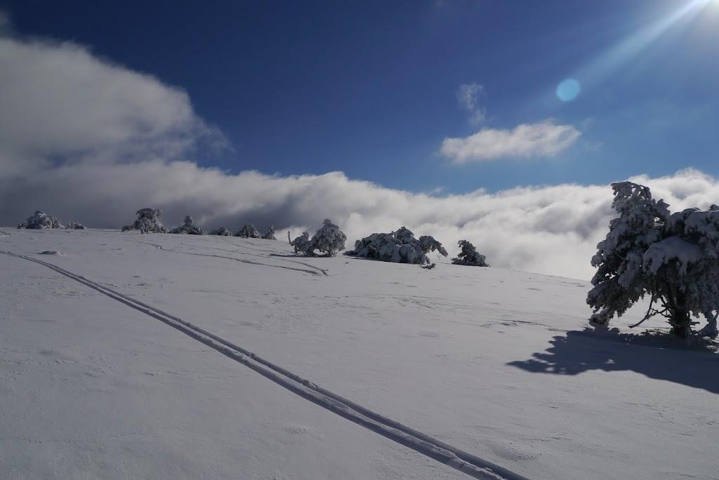 Col des Supeyres du 23 au 27 janvier 2014 P1040460