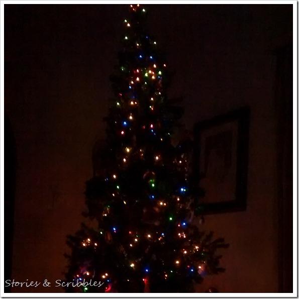 Christmas (24)