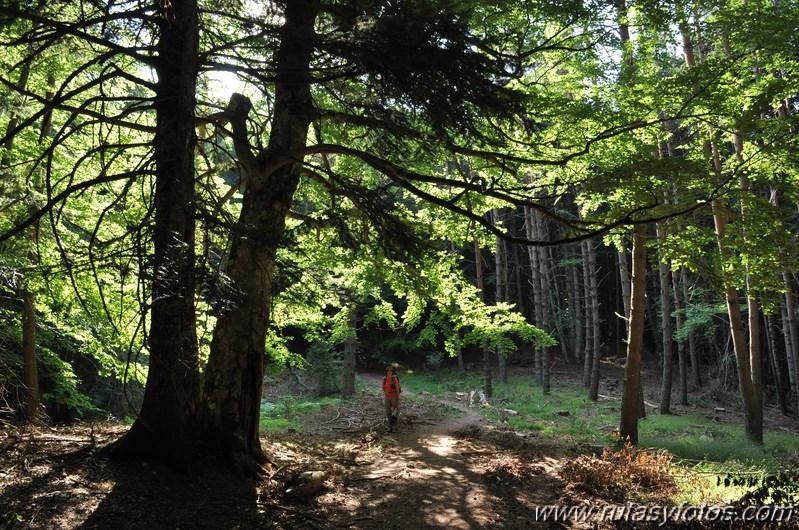 Castillo de Acher desde la Selva de Oza