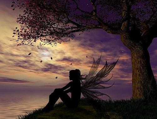 Fairy Sunset, Fairies Girls