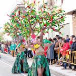 CarnavaldeNavalmoral2015_091.jpg