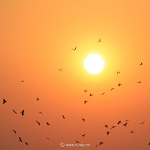 天坛的夕阳 photos, pictures