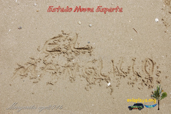 Playa El Manglillo NE110, Estado Nueva Esparta, Macanao