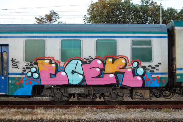 DSC_7000
