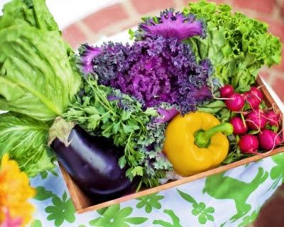 ранние фрукты и овощи