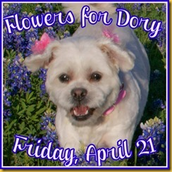 flowers for dory hosted by kinley & idaho pug ranch