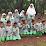 Darmawati Suyanto's profile photo