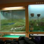 Археологический музей ВГПУ 002.jpg