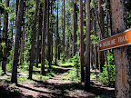 Our starting point on the Uinta Highline Trail