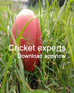 Cricket Live Scores Update All Crick Info you need
