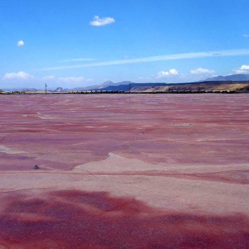 Lake Magadi, Kenya's Pink Lake