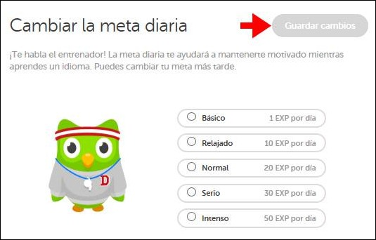 Abrir mi cuenta Duolingo - 538