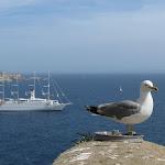 2010 - Corsica