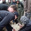 Kallioperägeologian kenttäkurssi kevät -09 - DSC01727.JPG