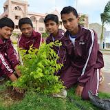 Gurukul Green Revolution (13).jpg