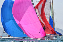 J/80 one-design sailboats- sailing under spinnaker