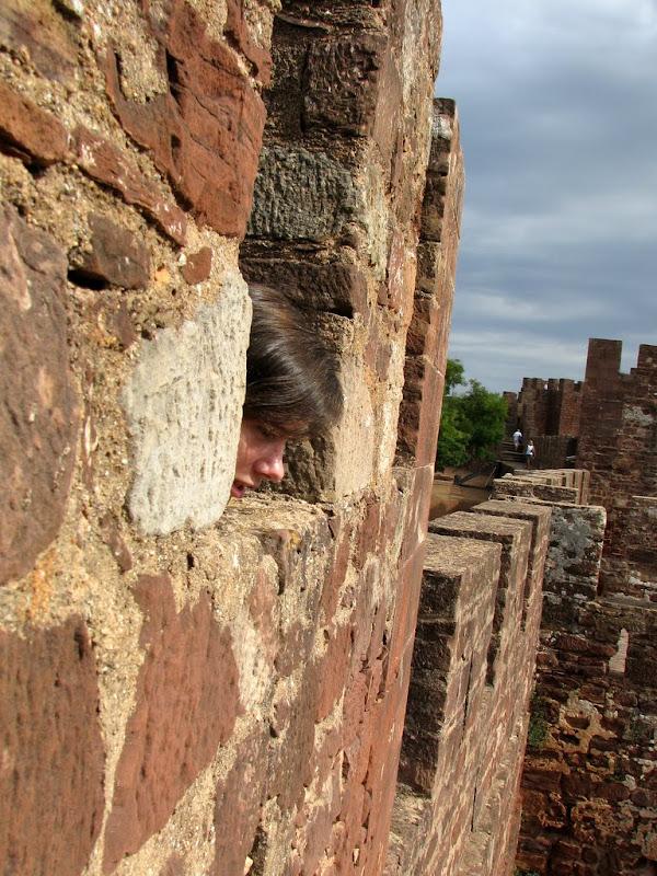 IMG_0644 - Silves castle