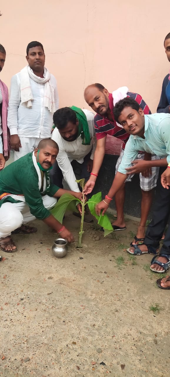 विश्व पर्यावरण दिवस के मौके पर किया गया वृक्षारोपण का आयोजन