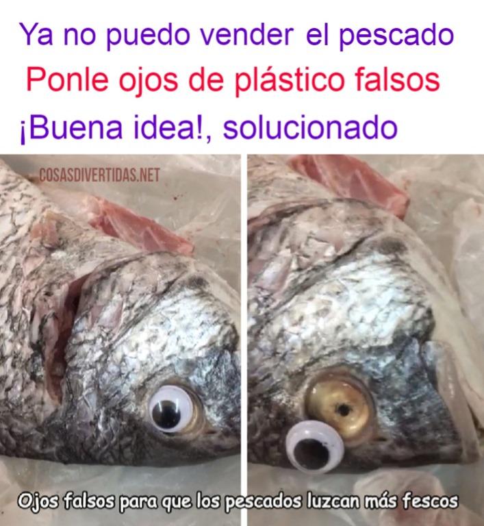 [pescado+ojos+falsos+%5B2%5D]