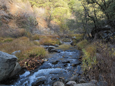 Looking upstream...there were some mining tailings here from the 1850s ©http://backpackthesierra.com