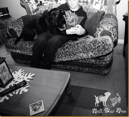 Matt B&W February 4th (© Bell Fur Zoo)
