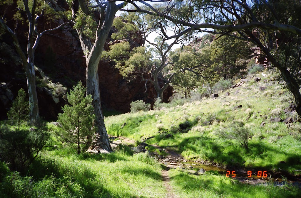 0037Flinders Ranges