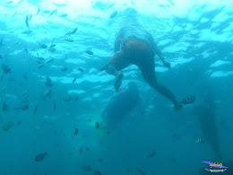 pulau pari 050516 GoPro 04