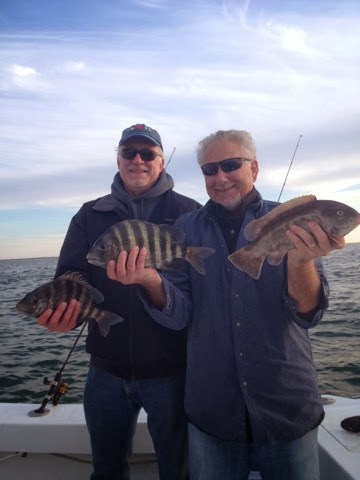 Rock Solid Fishing Chilly Willy