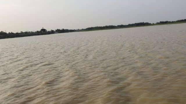 बारिश ने बढ़ाई मुश्किलें: बिहार के कई जिलों में बाढ़ का खतरा, गंगा समेत इन नदियों का बढ़ा जलस्तर