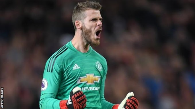'Man United Not Satisfied Under Solkjaer'- De Gea