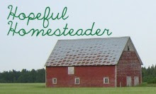 Hopeful Homesteader Button