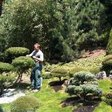 Garten in Gstaad. Wir Pflegen seit mehr als 20 Jahren Gartenbonsais