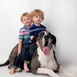 Dynamite Danes Family Album #3 - Brody%2Band%2BGriffin%2B079.jpg