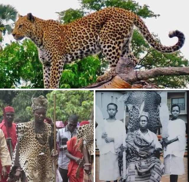 What Igbos Need to Know About Isiagu Symbol