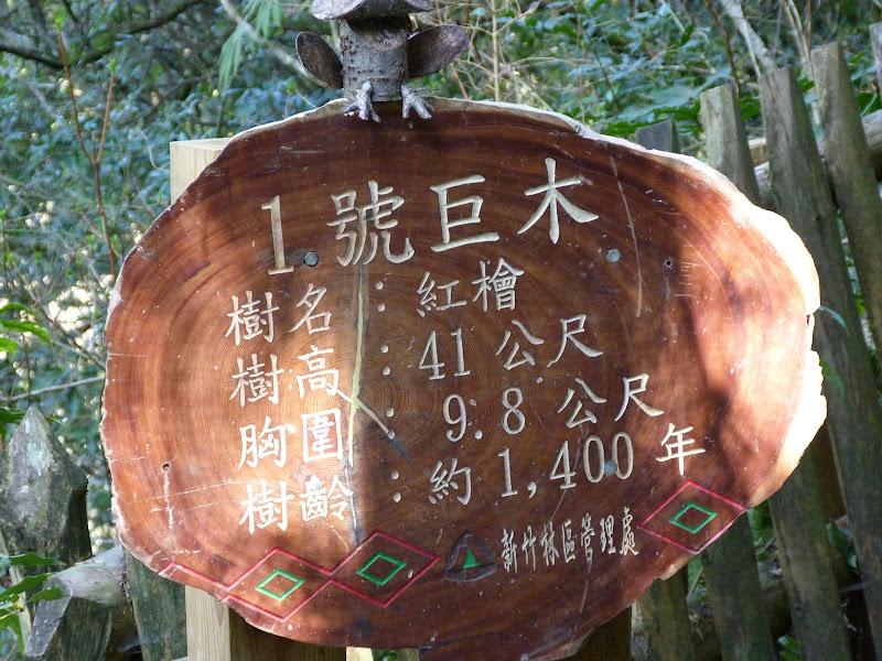 TAIWAN Chia yi, Taichung et quelque part ? au  au sud de Taipei - P1000317.JPG