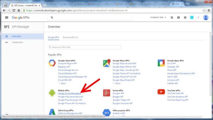 Web Push Notification Google Dev Console GCM Link