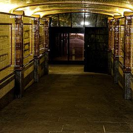 Yellow brick road by Raymond Fitzgerald - City,  Street & Park  Street Scenes ( london 19, street, uk, yellow, tunnel )