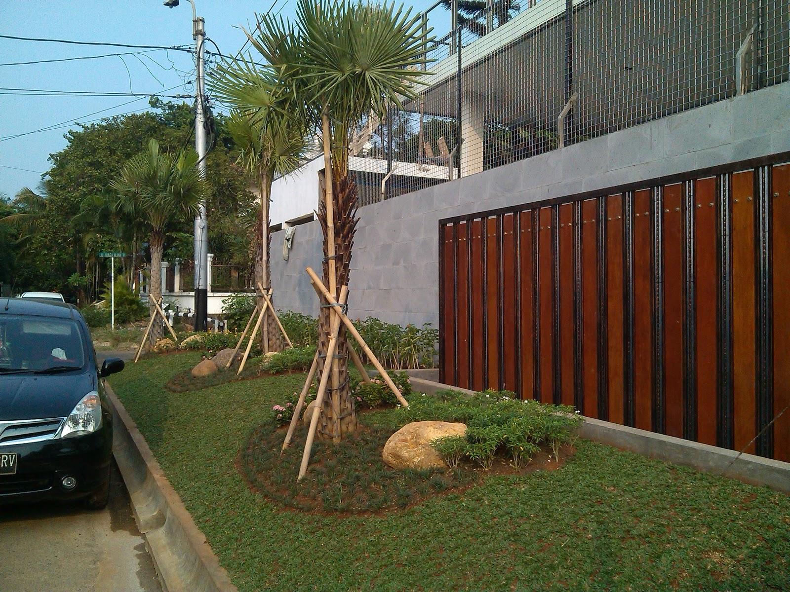 Taman Depan Rumah Minimalis SAUNG FLORA